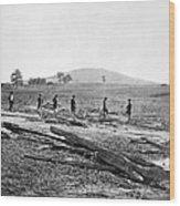 Civil War: Graves, 1862 Wood Print