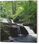 Clare Glens, Co Limerick, Ireland Irish Wood Print