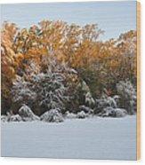 Clash Of Seasons Wood Print