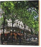 Classic Paris 3 Wood Print