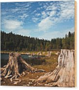 Clear Lake Oregon Wood Print