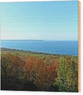 Clear View Wood Print