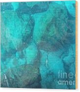 Clear Water 3 Ionian Sea Series Wood Print
