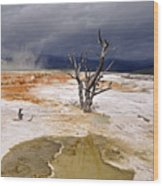 Clearing Storm At Mammoth Hot Springs Wood Print