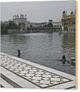 Clearing The Sarovar Inside The Golden Temple Resorvoir Wood Print
