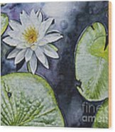 Clearwater Lilly Wood Print