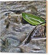 Clearway Creek Wood Print