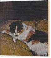 Cleo On The Blanket Wood Print