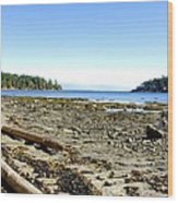 Cliff And Beach Wood Print