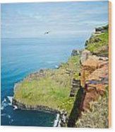 Cliff Of Moher 22 Wood Print