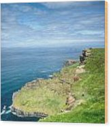 Cliff Of Moher 27 Wood Print