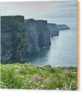 Cliff Of Moher 33 Wood Print