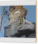 Cliffhanger Wood Print
