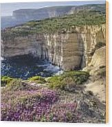 Cliffs Along Ocean With Wildflowers Wood Print