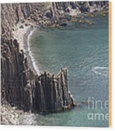 Cliffs At Grand Manan Island, Canada Wood Print