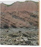 Cliffs At Joggins Nova Scotia Wood Print