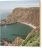 Cliffs On Grand Manan Island Wood Print