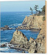 Cliffside Oceanview Wood Print