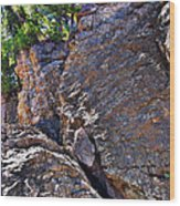 Climbing Rocks And Trees Wood Print
