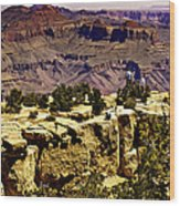 Climbing The Grand Canyon Wood Print