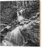 Climbing Up Broads Fork Bw Wood Print