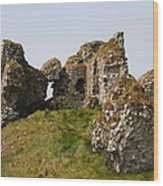 Clonmacnoise Castle Ruin - Ireland Wood Print
