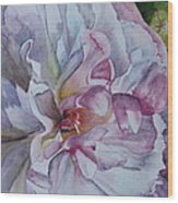 Close Focus Peony Wood Print