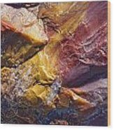 Close Up Of Petrified Wood, Petrified Wood Print