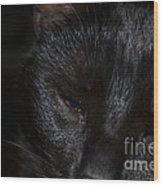 Close-up Of Satin Wood Print