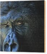 Close View Of A Gorilla Gorilla Gorilla Wood Print