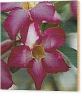 Close View Of A Tree Blossom Flute Wood Print