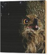 Close View Of Owl Near A Tree Trunk Wood Print
