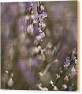 Close View Of Purple Wildflowers Wood Print