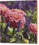 Closeup Of Colorful Flowers In Butchart Wood Print