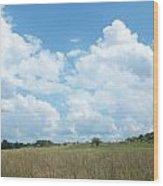 Cloud Filled Sky Wood Print