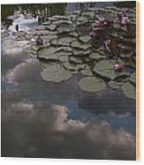 Clouded Pond Wood Print