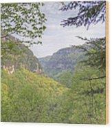 Cloudland Canyon Wood Print