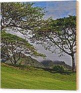 Clouds And Kiawe Wood Print