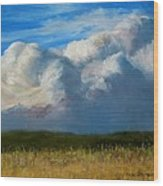 Clouds Over The Meadow Wood Print