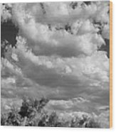 Clouds Rising Bw Palm Springs Wood Print