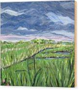Cloudy Marsh Wood Print