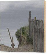 Cloudy Morning Wood Print by Michael Friedman