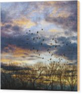 Cloudy Sunset With Bare Trees And Birds Flying Wood Print