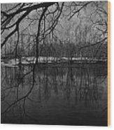 Clover Pond Wood Print