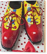 Clown Shoes  Wood Print