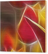 Cluisiana Tulips Triptych Panel 1 Wood Print