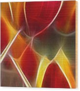 Cluisiana Tulips Triptych Panel 3 Wood Print