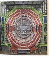 Cms Detector, Cern Wood Print by David Parker