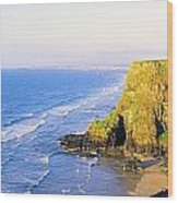 Co Derry, Ireland View Of Cliffs And Wood Print