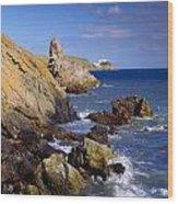 Co Dublin, The Bailey Lighthouse Wood Print